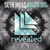 Seth Hills - Raise Your Hands (DEEPSHOW VIP Festival Mashup)