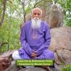 Tulasi Dal - Part-3 by Brahmarshi Patriji, Translated by Manish Kumar