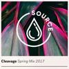Cleavage - Spring Mix 2017-06-14 Artwork