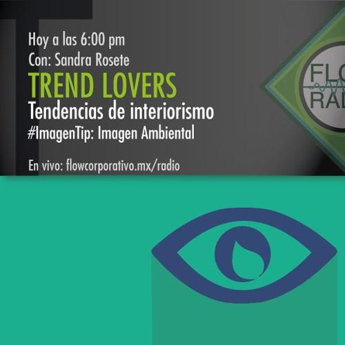 Trend Lovers 084 - Tendencias de Interiorismo / Imagen Tip: Imagen Ambiental