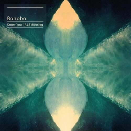 Bonobo - Know You (ALB Bootleg)