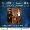 Mindful Families with Dan Siegel and Joe Loizzo Preview 2