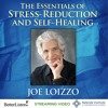 Essential Self Healing: The Four Truths And Four Scopes Of Deep Mindfulness Preview 1