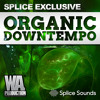 SPLICE EXCLUSIVE: Organic Downtempo | 200 Melodies, Drum Loops & Foley Samples mp3