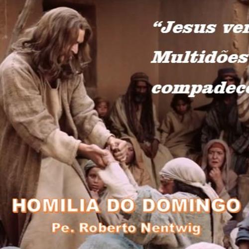 HOMILIA - 11º DOMINGO DO TEMPO COMUM