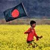 National Anthem Of Bangladesh(Flute instrumental)
