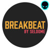 BreakBeat Audio Asset By Seldome From WAV Maniacs Full Preview MIX