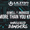 Axwell  Ingrosso - More Than You Know (Jayden Jaxx Festival VIP Mix)