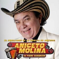 Aniceto Molina Mix II (June 2k17)- El Peluquero Salvatrucho, El Garrobero, Las Pupusas, etc.