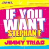 Stephan F Feat. Jimmy Trias - If You Want (MaderaDeejay Extended)