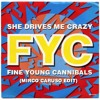 Free Download: She Drives Me Crazy (Mirco Caruso Edit)