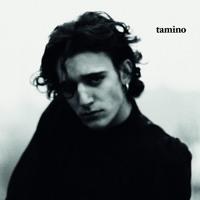 Tamino - Habibi Artwork