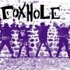 Foxhole : Pourquoi le punk-rock pour des jeunes d'aujourd'hui ?