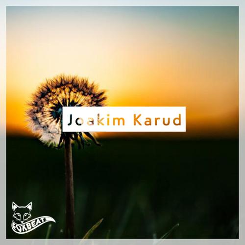 Joakim Karud - Candyd - Royalty Free Vlog Music [BUY=FREE]
