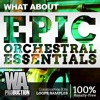 Epic Orchestral Essentials | Construction Kits, Cinematic Samples & Loops, Transitions