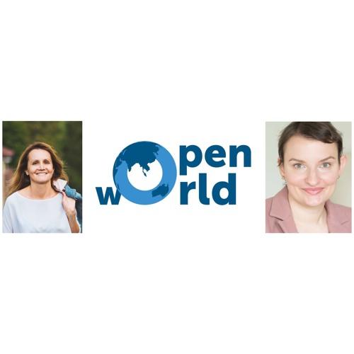 #10 Ирландия с Ольгой Лермонтовой: стоит ли ехать за работой твоей мечты в страну не твоей мечты