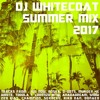 Summer 2017 (Jamaican Funky) (Carnival Sounds)