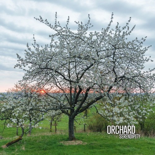 ORCHARD - We host you