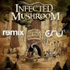 infected mushroom - Smashing The Opponent (cru9  Remix) Free Dow