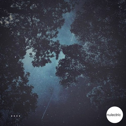NUL038 - Thales Boutroumlis - I Am Up In The Sky EP