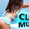 SUMMER DANCE MIX ★ REMIXES ★ CLUB MUSIC (DJ FLX)