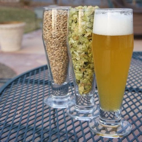 Craft Beer On The Bay- Locally Grown Ingredients