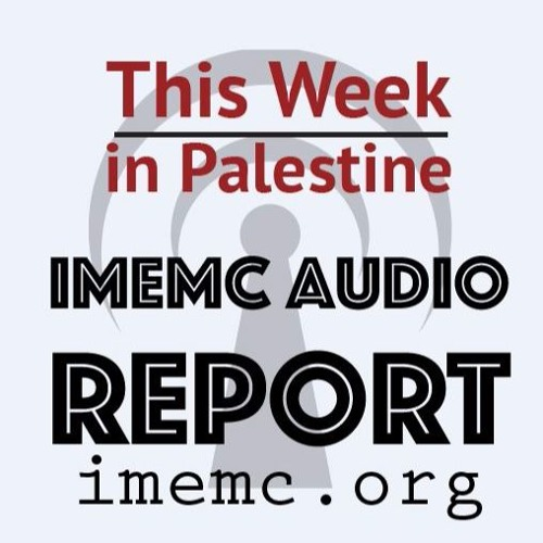 This Week in Palestine Week 25 2017