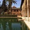 Un homenaje a Granada