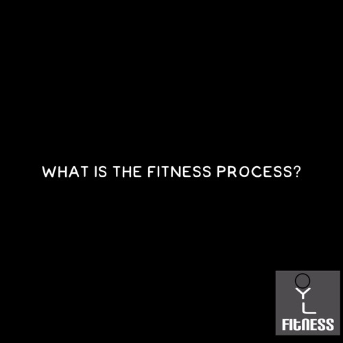 What is the Fitness Process?