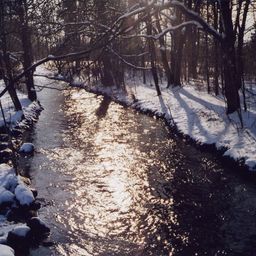 Winter Impressions Part 1