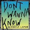 Maroon 5 Ft. Kendrick Lamar - Don't Wanna Know (Piano Cover)