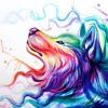 Download David Guetta ft. Sia vs The Proclaimers - Titanium 500 (DJ Schmolli) Mp3