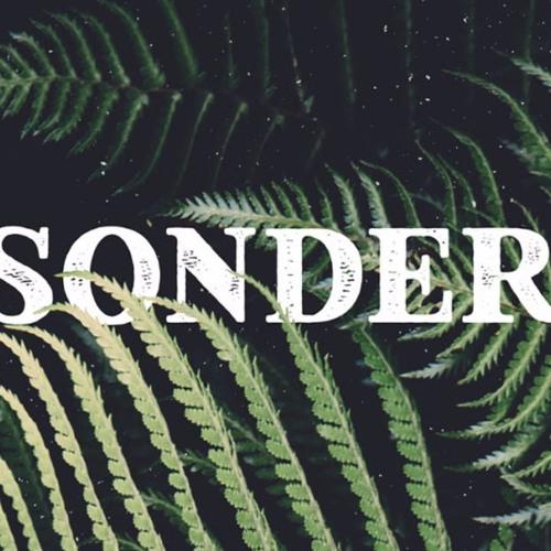 Bassment (by Sonder) (Remix)