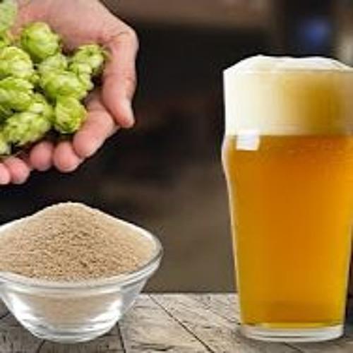 Episode 791 -  Three Cheers for Gluten-free Beer
