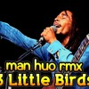 BOB MARLEY  DJPOLYRASTA - 3 LITTLE BIRDS RMX17