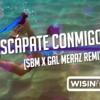 Escápate Conmigo (SBM X GAL MERAZ Remix)- Wisin ft Ozuna Portada del disco