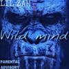 WILD MIND mp3