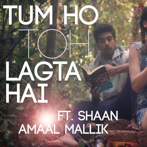 Tum Ho Toh Lagta Hai - Amaal Mallik Feat  Shaan (BassBeard