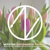 Ed Sheeran - Supermarket Flowers (NexZone Remix)