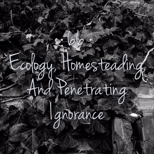 #66   Ecology, Homesteading, and Penetrating Ignorance