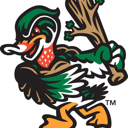 2017 Down East Wood Ducks