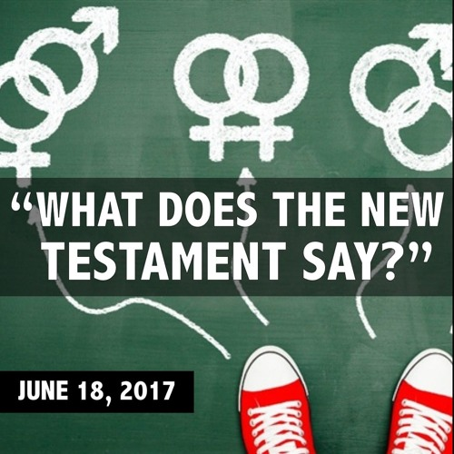 What Does the New Testament Say? || Is It a Sin to be Gay? (part 3)