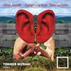 Clean Bandit - Symphony feat. Zara Larsson (Tommer Mizrahi Remix)