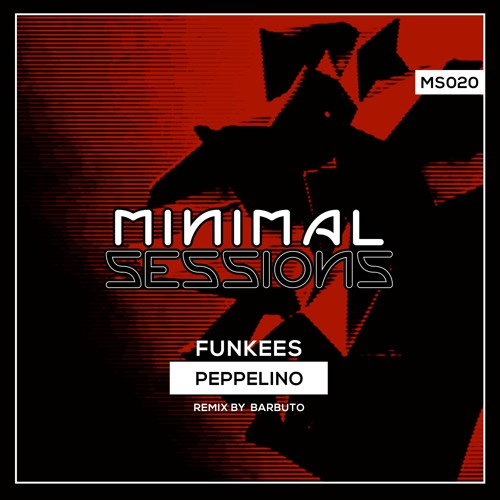 MS020: Peppelino - Funkees w/ remix by Barbuto