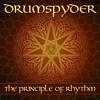 Drumspyder - Lynx