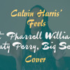 Calvin Harris - Feels Ft. Pharrell Williams, Katy Perry, Big Sean Cover By Vrishti Pires