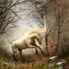 My song about the last unicorn/ mein Lied über das letzte Einhorn