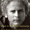 What Is It All but Luminous by Art Garfunkel, read by Art Garfunkel