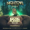 ELECTRIC FOREST FESTIVAL Promo Mix 2017-06-30 Artwork
