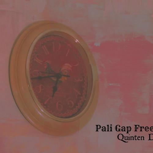Pali Gap Freestyle Quinten Diego By Jalepeño Pep Free Listening